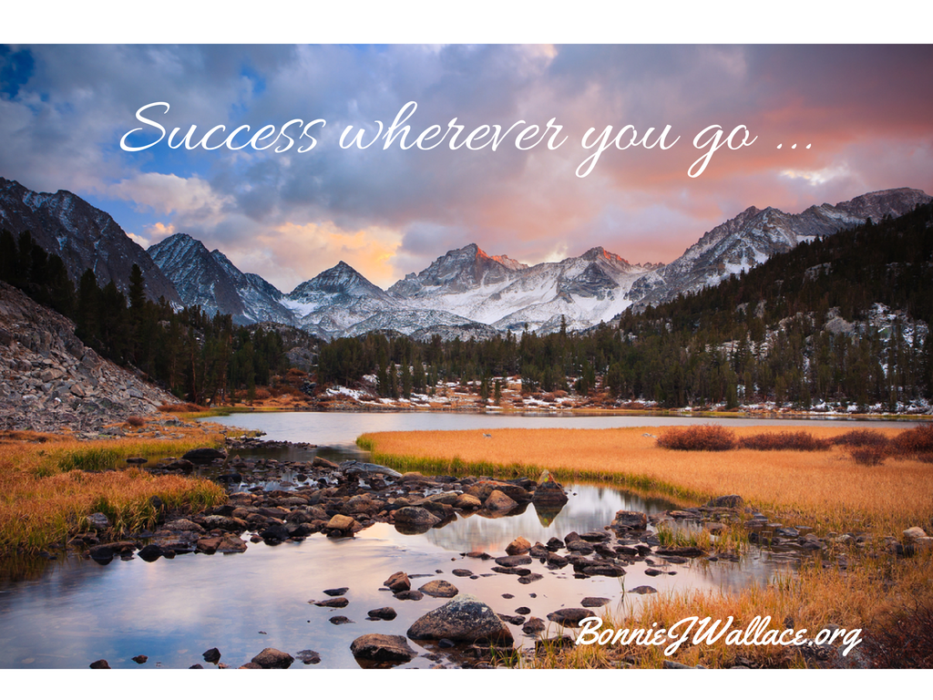 Success wherever you go ... (1)