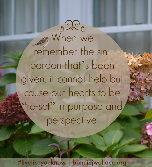 purpose-and-perspective